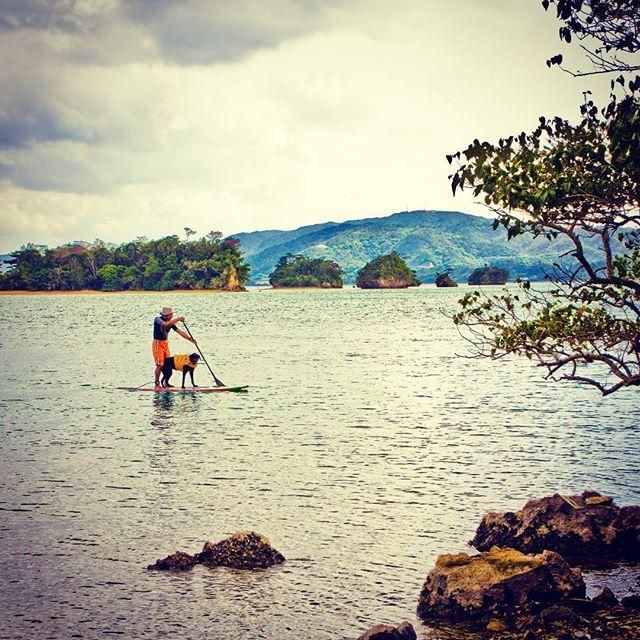 漕遊。愛犬と一緒に漕いで遊ぶ。時間を共有する。#SOUYU #漕遊 #漕いで遊ぶ #paddle#カヤック #kayak#シーカヤック #seakayak#カヌー #ラフティング #SUP #スタンドアップパドルボード #サーフィン #surfing #キャンプ #camp #フィッシング #fishing#旅 #ROADTRIP#フリーライド #FREERIDE#犬 #dog #愛犬